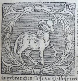 fig. 3, A. 115.1 Eth. (b), c. D iii r, Aries, detail