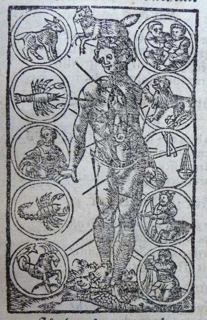 fig. 8, A. 115.1 Eth. (b), Melothesia, c. C iiii r, detail